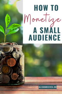 monetize small audience
